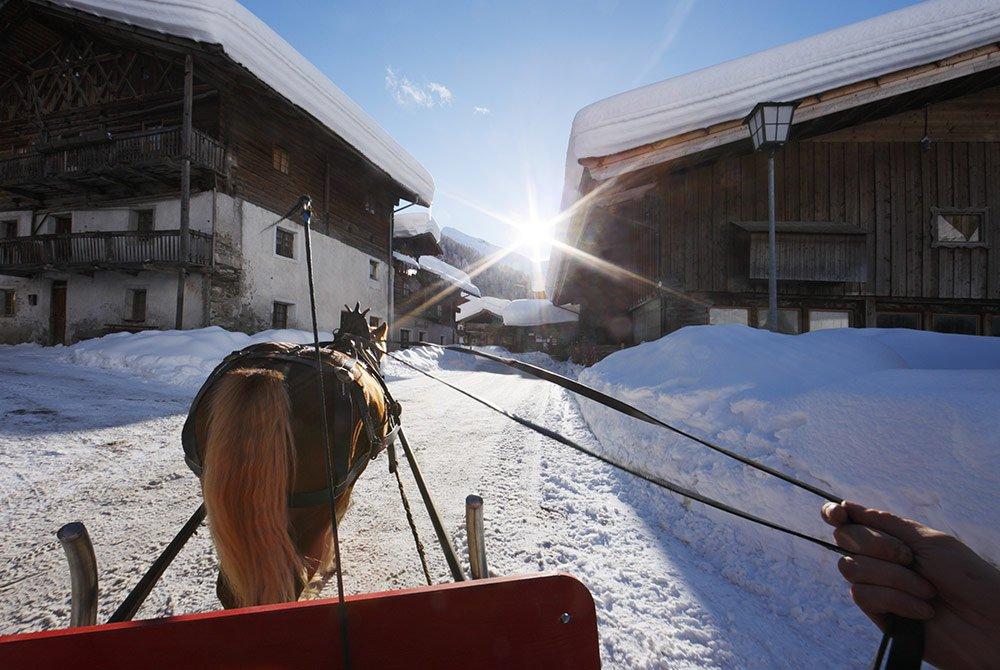 Romantik pur – Eine Pferdeschlittenfahrt auf der Seiser Alm