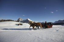 pferdeschlittenfahrten-seiser-alm11